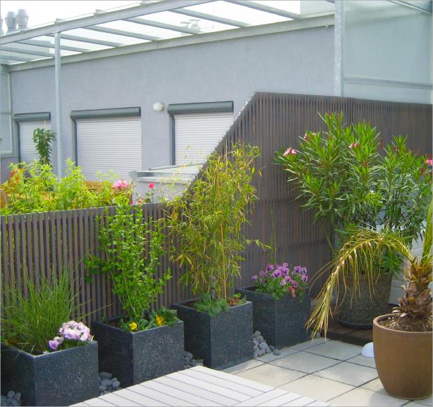 Garten Terrasse: Sichtschutz_Garten_Terrasse_3
