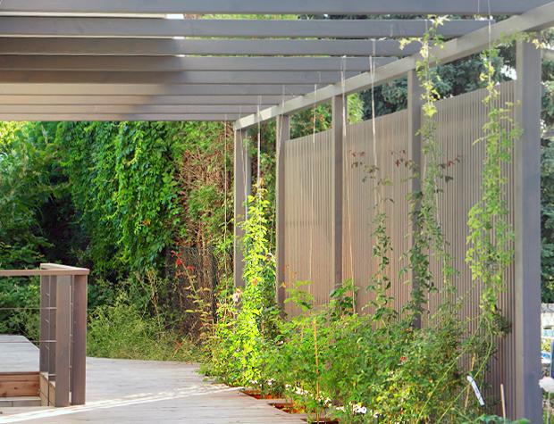Vorgarten mit Terrassendecks und Pergola