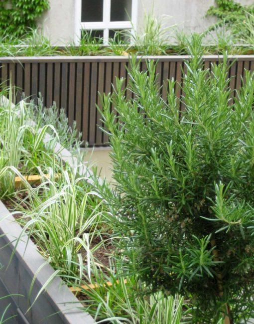 Pflanzbehälter Tavola nach Maß
