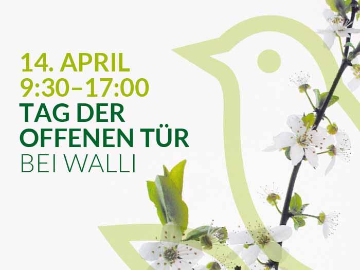 Gartenmöbel Hausausstellung bei WALLI