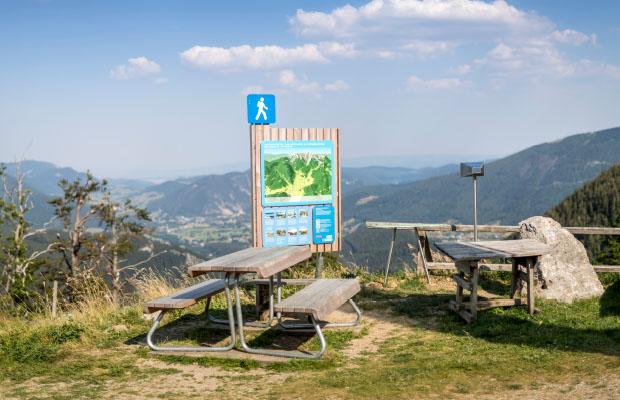 Die Wiener Alpen Tisch-Bank mit Leitsystem in Lärche von WALLI Wohnraum Garten